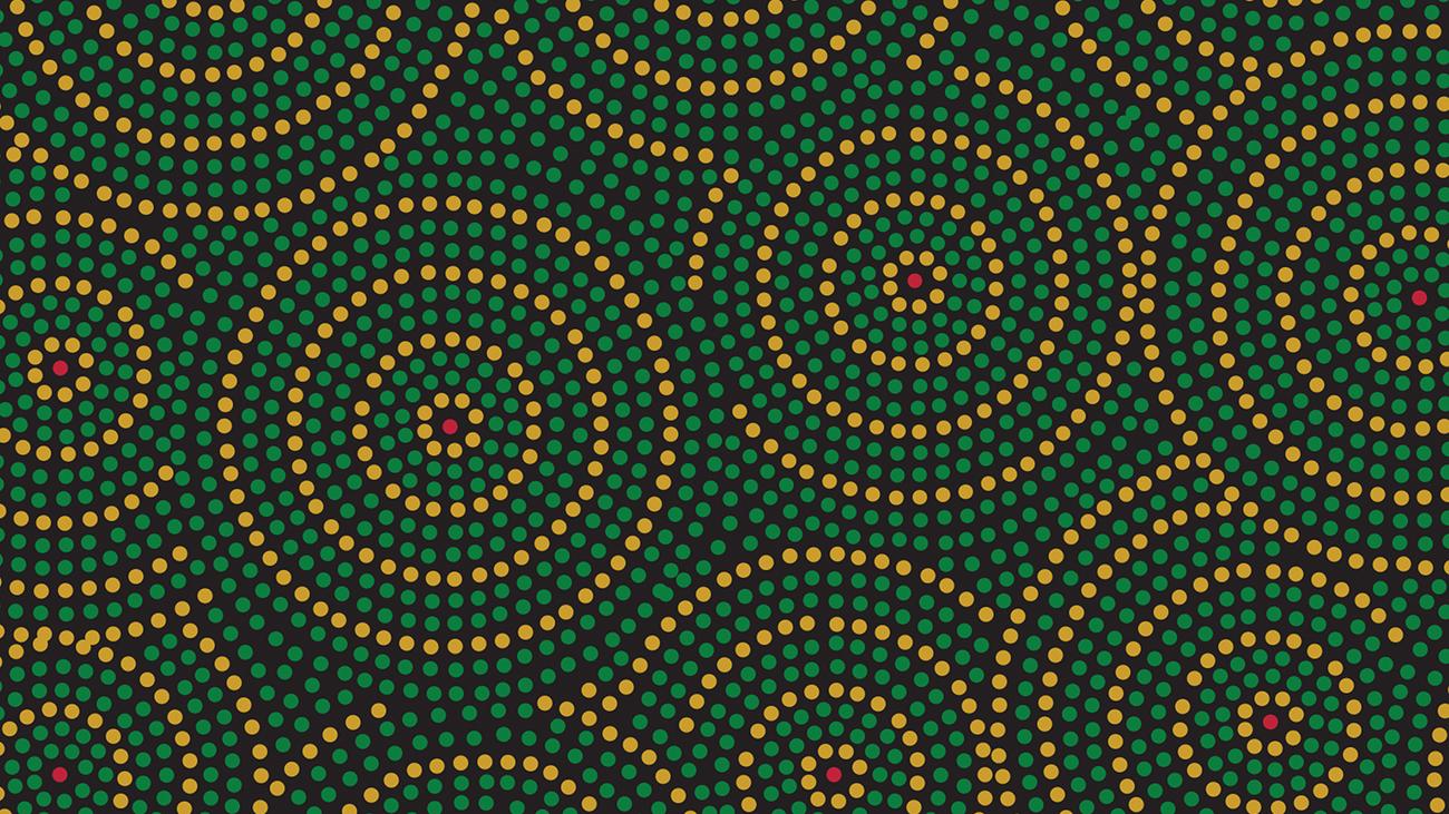 Koala Ted pattern